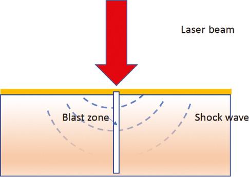 bioi-2020-0043-f02.jpg
