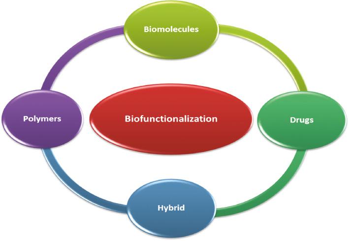 bioi-2020-0047-f02.jpg